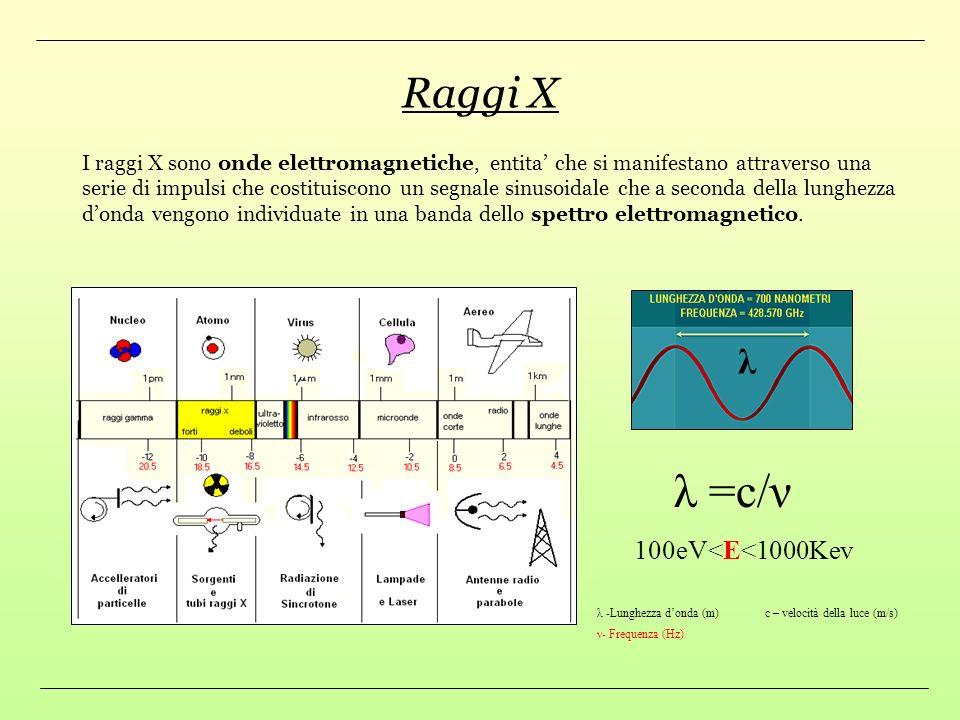 Indice Argomenti Raggi X Rivelatori al Silicio (silicon drift detector) Esperimento DEAR e SIDDHARTA Analisi Dati Esperienze di Laboratorio : La legge
