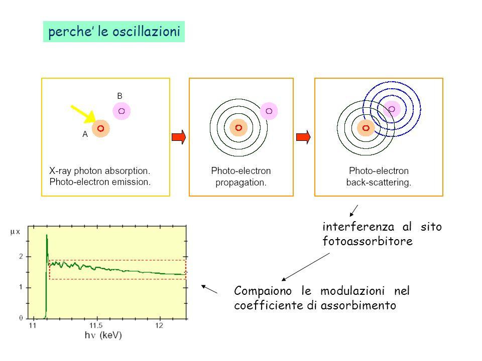 perche le oscillazioni interferenza al sito fotoassorbitore Compaiono le modulazioni nel coefficiente di assorbimento