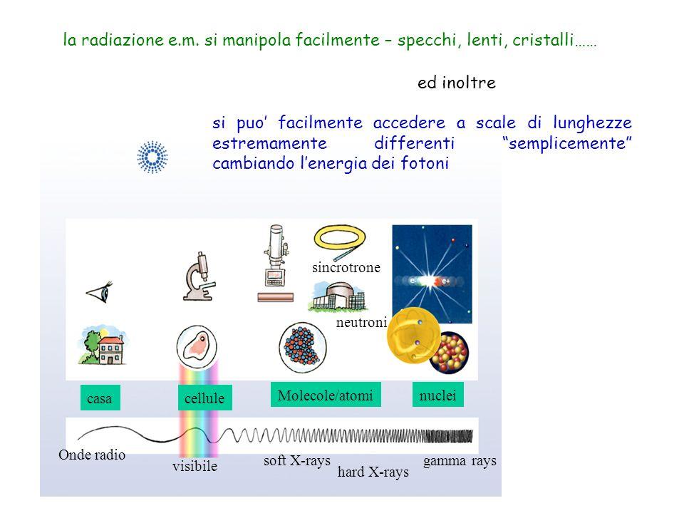 Onde radio visibile soft X-rays hard X-rays gamma rays casacellule Molecole/atominuclei sincrotrone neutroni si puo facilmente accedere a scale di lun