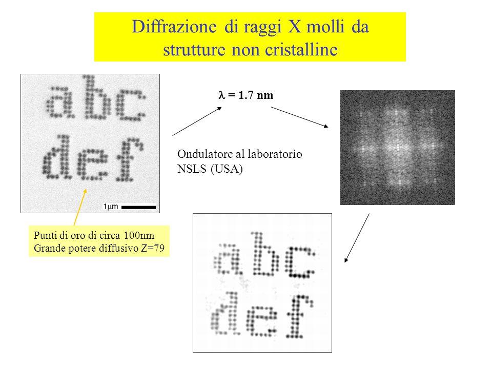 Diffrazione di raggi X molli da strutture non cristalline Punti di oro di circa 100nm Grande potere diffusivo Z=79 = 1.7 nm Ondulatore al laboratorio