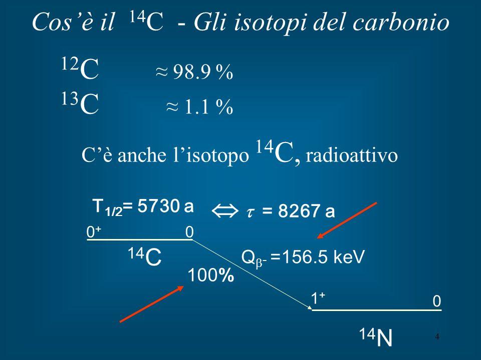 5 Produzione del radiocarbonio In atmosfera: produzione di neutroni per reazioni (p, n) dei protoni cosmici sui nuclei degli elementi dellaria (O e N) in atmosfera i neutroni si termalizzano netroni termici reazione 14 N(n,p) 14 C [ th 1 barn]; rate di produzione medio di 14 C 2.2 cm -2 s -1 (massimo rate di produzione tra i 15 e i 18 Km) concentrazione in atmosfera 14 C: R( 14 C/ 12 C)1.210 -12 in atmosfera il 14 C forma tipicamente 14 CO 2