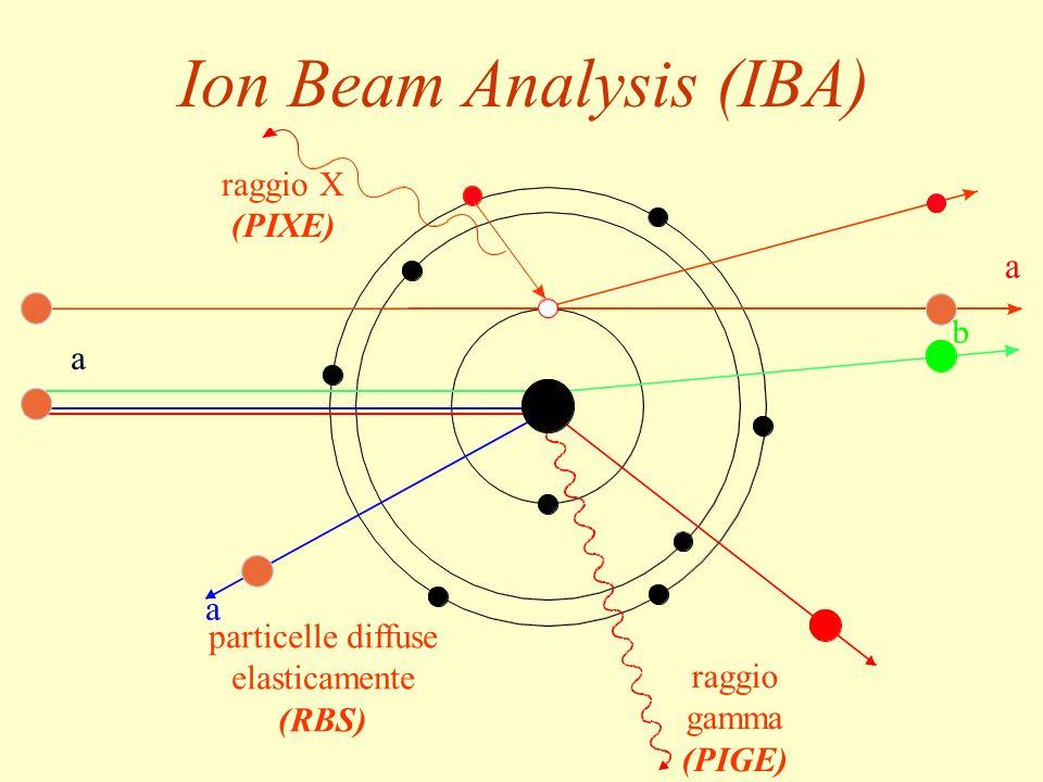 41 a raggio gamma (PIGE) raggio X (PIXE) particelle diffuse elasticamente (RBS) Ion Beam Analysis (IBA)