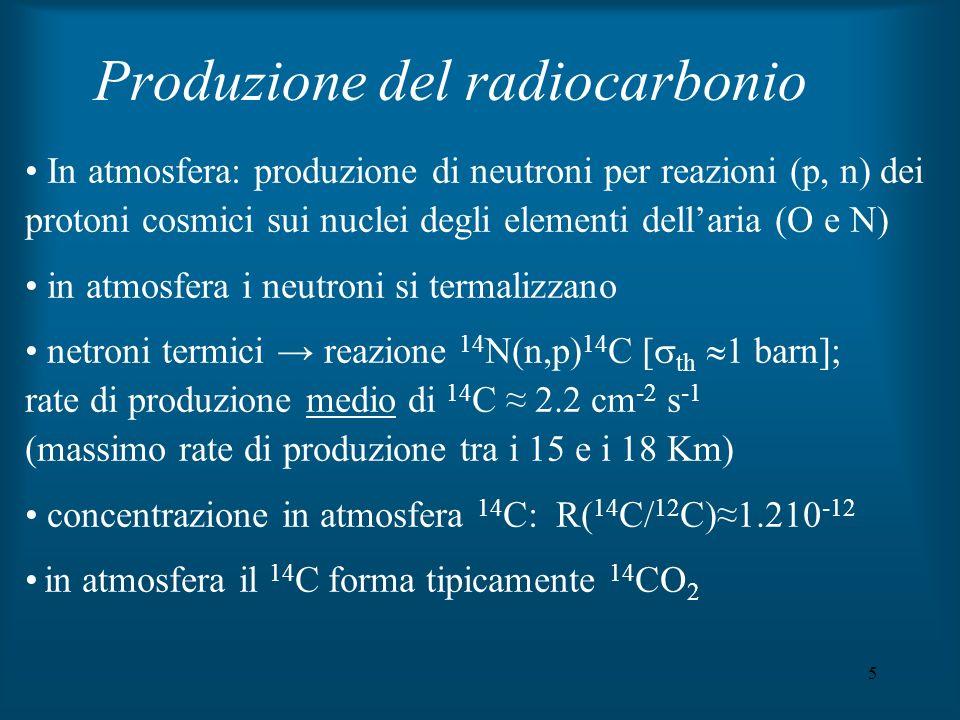 5 Produzione del radiocarbonio In atmosfera: produzione di neutroni per reazioni (p, n) dei protoni cosmici sui nuclei degli elementi dellaria (O e N)