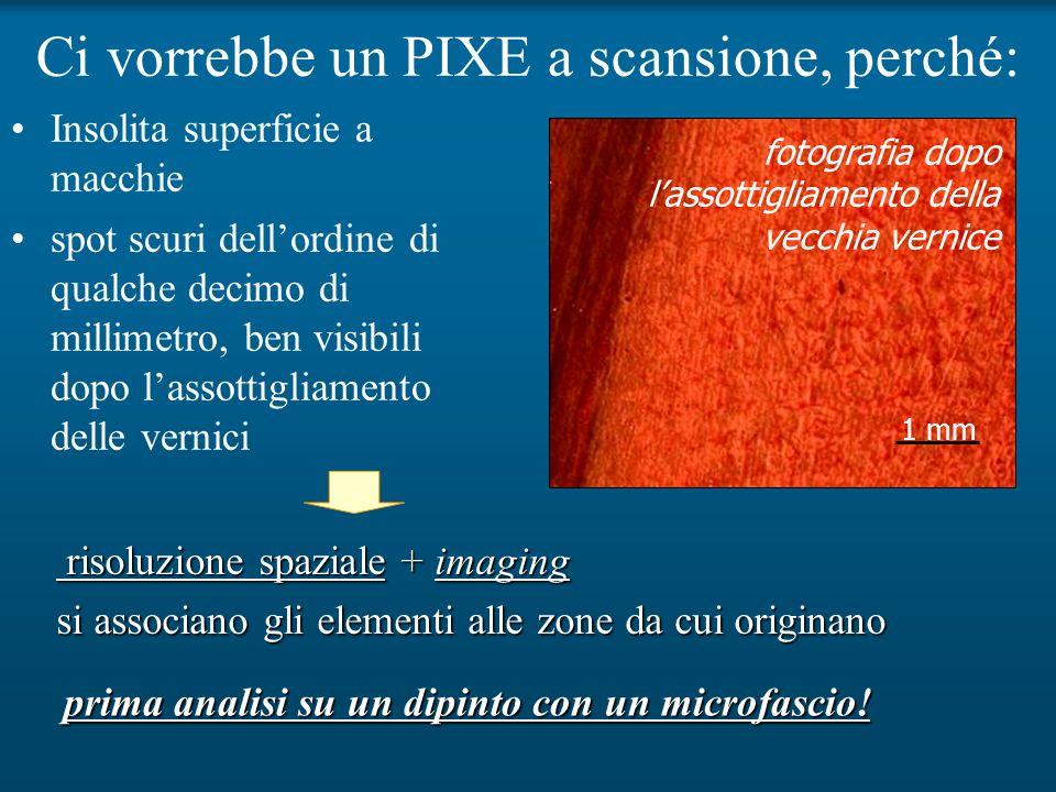 Ci vorrebbe un PIXE a scansione, perché: prima analisi su un dipinto con un microfascio! 1 mm Insolita superficie a macchie spot scuri dellordine di q