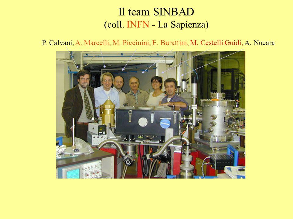 Il team SINBAD (coll. INFN - La Sapienza) P. Calvani, A. Marcelli, M. Piccinini, E. Burattini, M. Cestelli Guidi, A. Nucara
