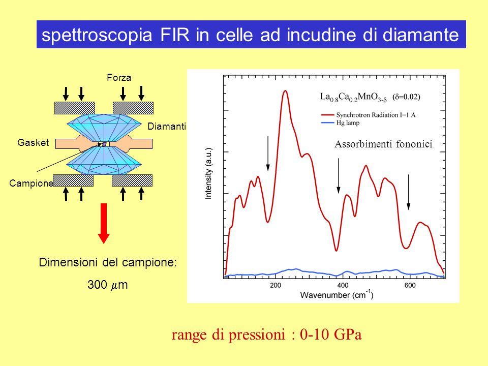 Forza Diamanti Gasket Campione Dimensioni del campione: 300 m spettroscopia FIR in celle ad incudine di diamante range di pressioni : 0-10 GPa Assorbi