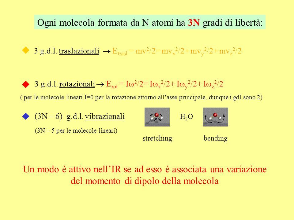 Ogni molecola formata da N atomi ha 3N gradi di libertà: 3 g.d.l. traslazionali E trasl = mv 2 /2= mv x 2 /2+ mv y 2 /2+ mv z 2 /2 3 g.d.l. rotazional