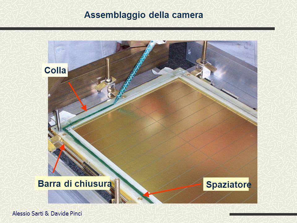 Alessio Sarti & Davide Pinci Colla Spaziatore Barra di chiusura Assemblaggio della camera