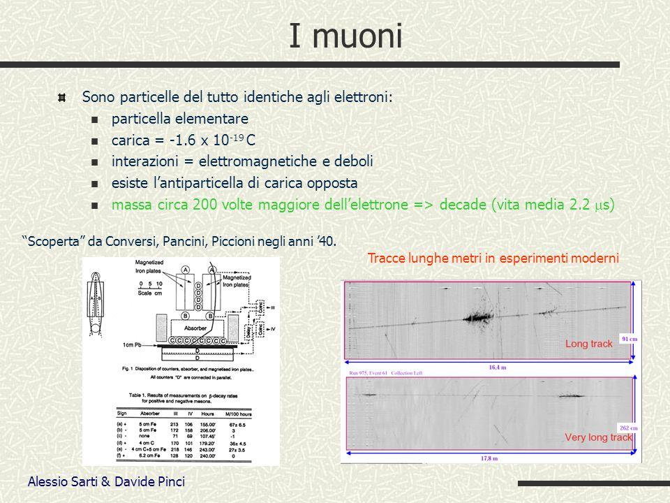 Alessio Sarti & Davide Pinci I muoni Sono particelle del tutto identiche agli elettroni: particella elementare carica = -1.6 x 10 -19 C interazioni = elettromagnetiche e deboli esiste lantiparticella di carica opposta massa circa 200 volte maggiore dellelettrone => decade (vita media 2.2 s) Scoperta da Conversi, Pancini, Piccioni negli anni 40.