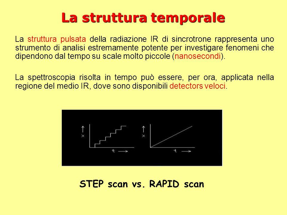 La struttura temporale La struttura pulsata della radiazione IR di sincrotrone rappresenta uno strumento di analisi estremamente potente per investiga