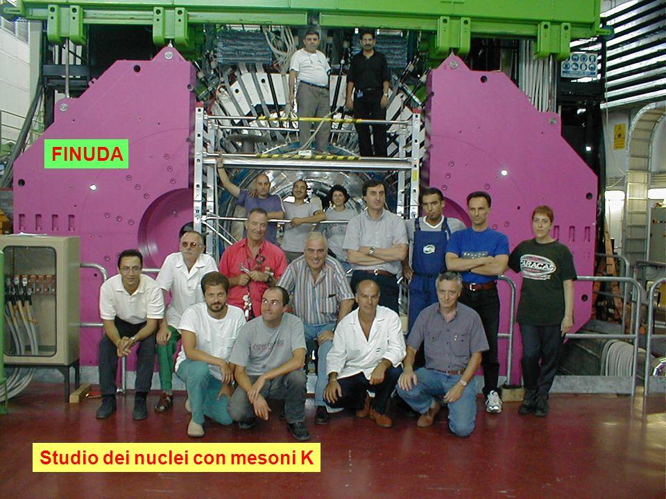 FINUDA Studio dei nuclei con mesoni K