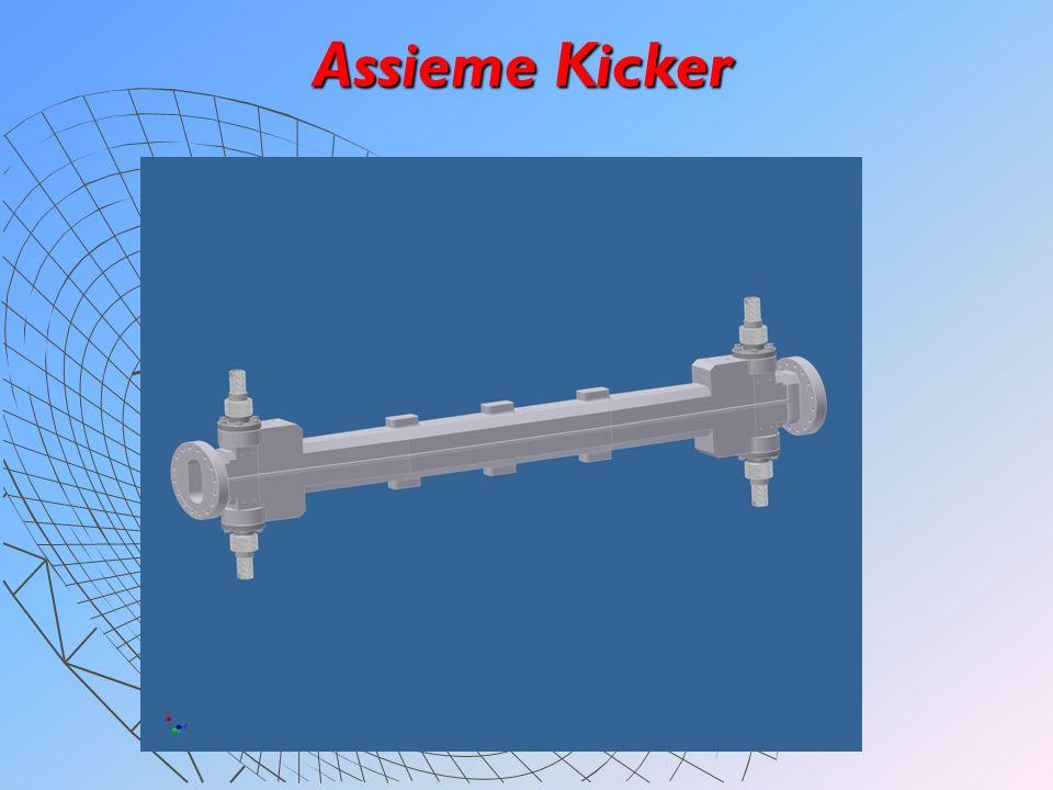 Sezione Kicker