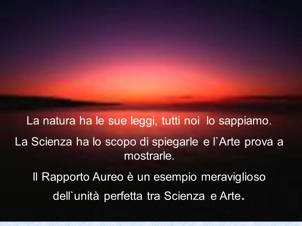 La natura ha le sue leggi, tutti noi lo sappiamo. La Scienza ha lo scopo di spiegarle e l`Arte prova a mostrarle. Il Rapporto Aureo è un esempio merav