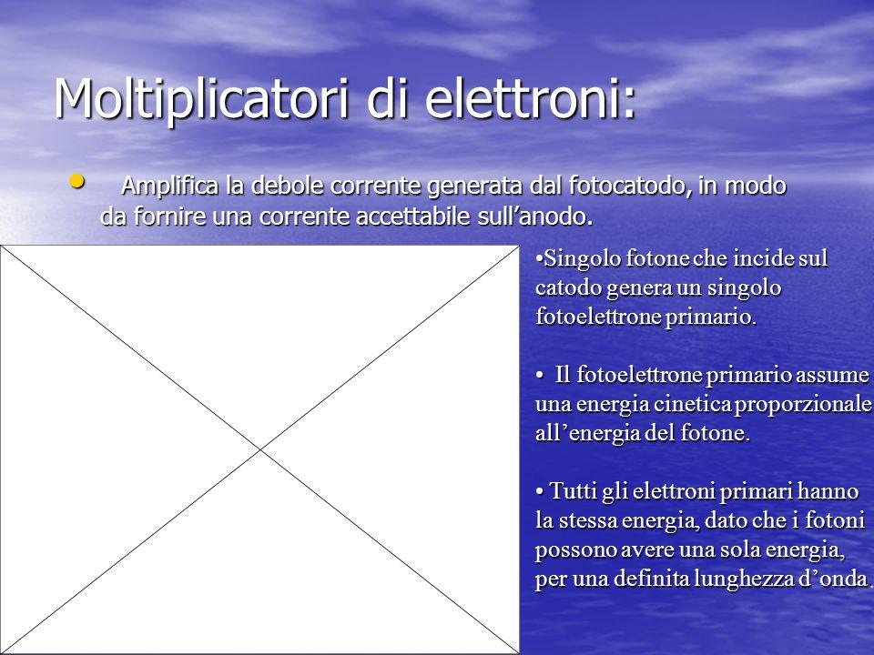 Moltiplicatori di elettroni: Amplifica la debole corrente generata dal fotocatodo, in modo da fornire una corrente accettabile sullanodo. Amplifica la