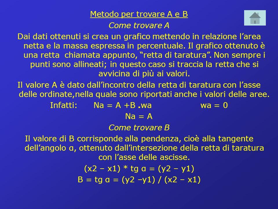 Metodo per trovare A e B Come trovare A Dai dati ottenuti si crea un grafico mettendo in relazione larea netta e la massa espressa in percentuale.