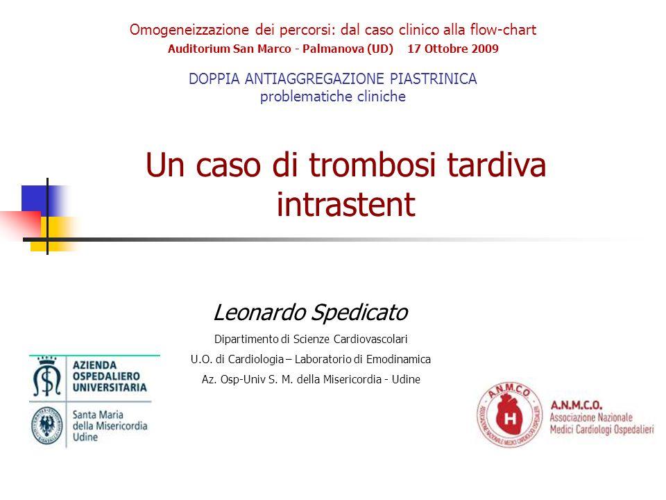 Omogeneizzazione dei percorsi: dal caso clinico alla flow-chart Auditorium San Marco - Palmanova (UD) 17 Ottobre 2009 DOPPIA ANTIAGGREGAZIONE PIASTRIN