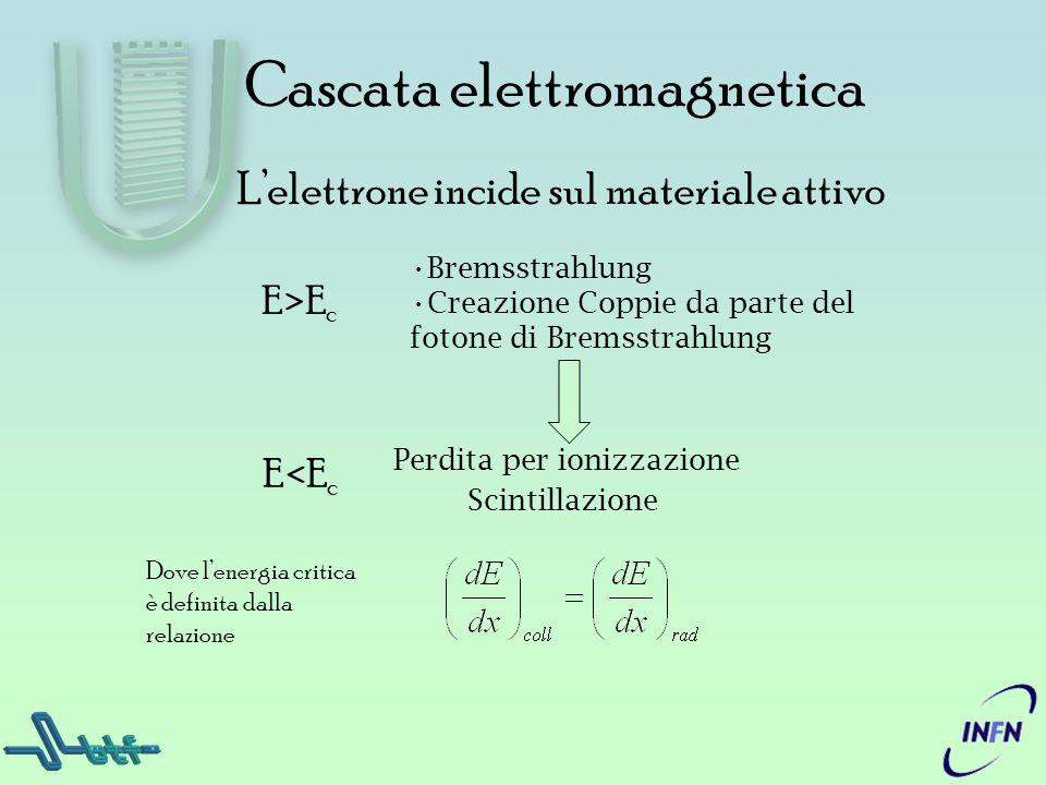 Bremsstrahlung Creazione Coppie da parte del fotone di Bremsstrahlung Cascata elettromagnetica Perdita per ionizzazione Scintillazione E>E c E<E c Lel