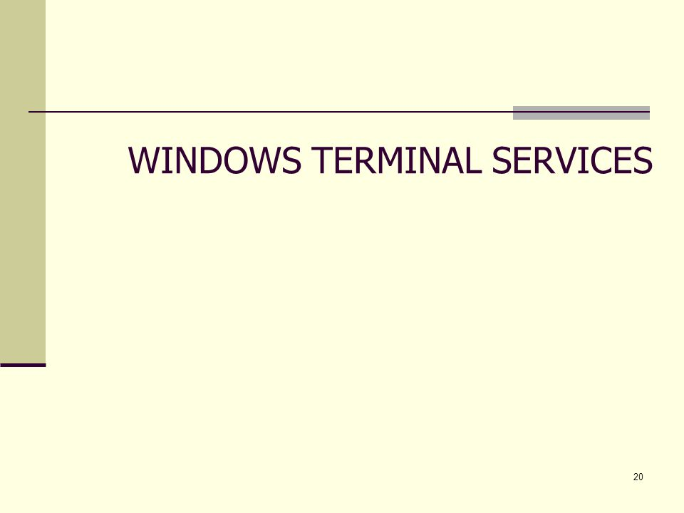 20 WINDOWS TERMINAL SERVICES