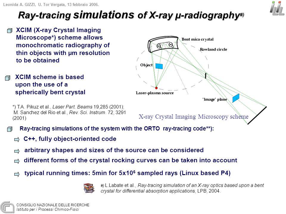 CONSIGLIO NAZIONALE DELLE RICERCHE Istituto per i Processi Chimico-Fisici Leonida A. GIZZI, U. Tor Vergata, 13 febbraio 2006. XCIM (X-ray Crystal Imag