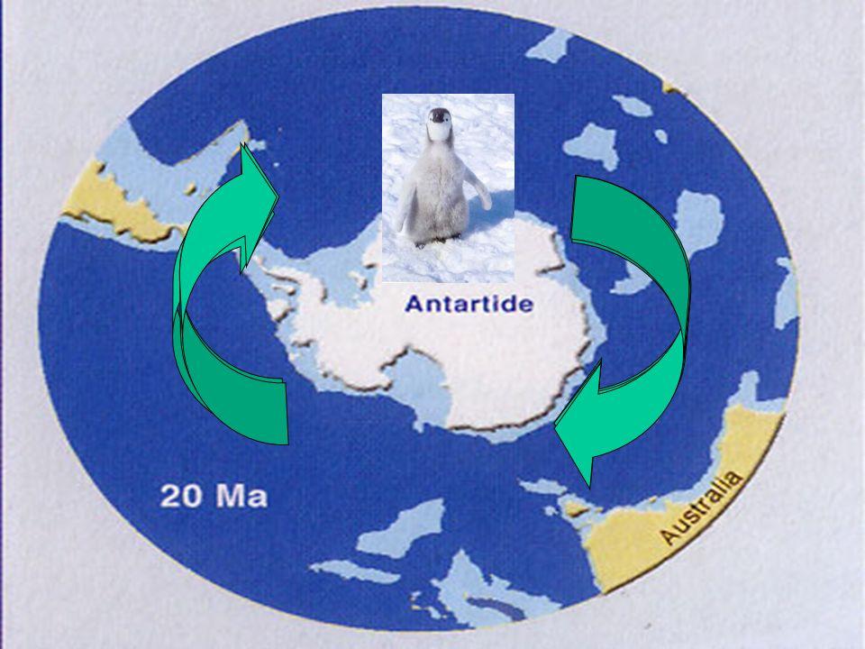 Le 3 cause astronomiche cicliche variazione della eccentricità dellorbita terrestre 0 - 6% (oggi 1.67%), lanalisi spettrale mostra una periodicità dop