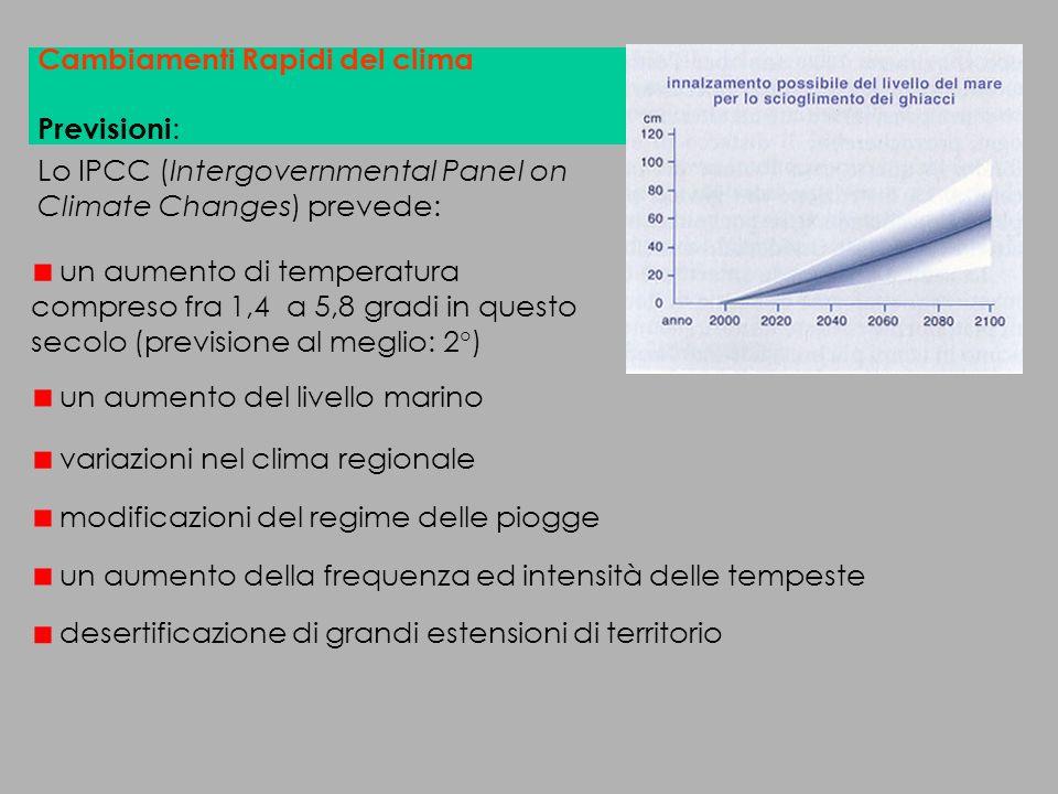 Contributo alle emissioni nellanno 1995