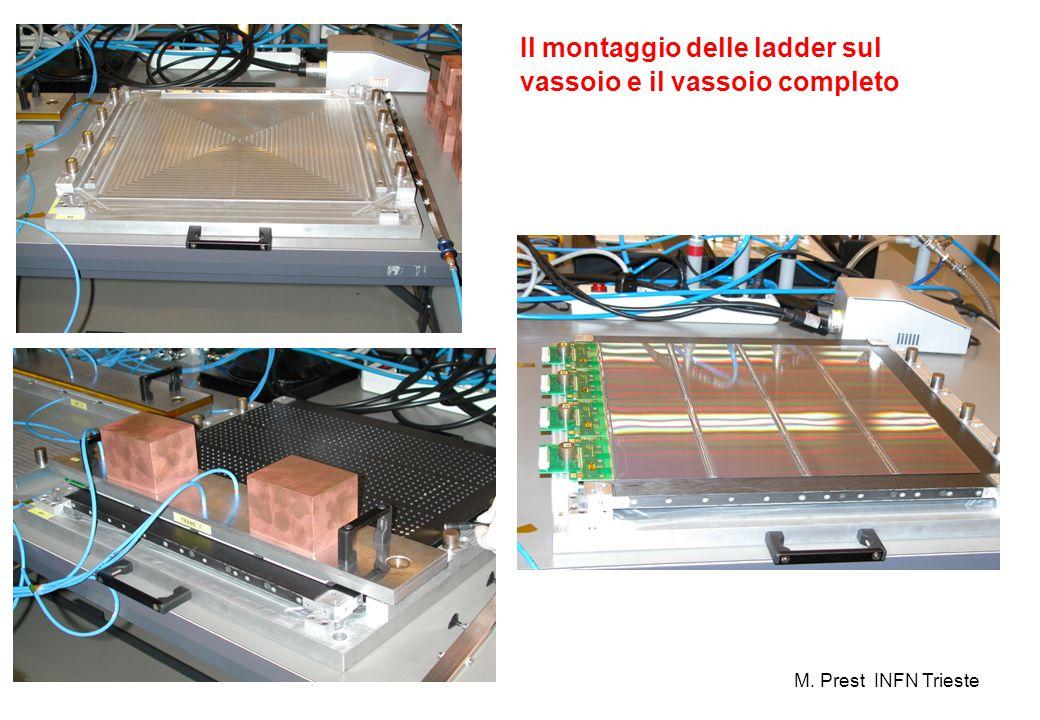 Il montaggio delle ladder sul vassoio e il vassoio completo M. Prest INFN Trieste