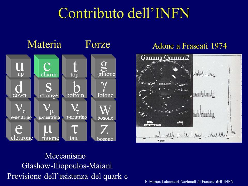 F. Murtas Laboratori Nazionali di Frascati dellINFN Z bosone W fotone g gluone e e d down u up elettrone e-neutrino muone -neutrino s strange c charm