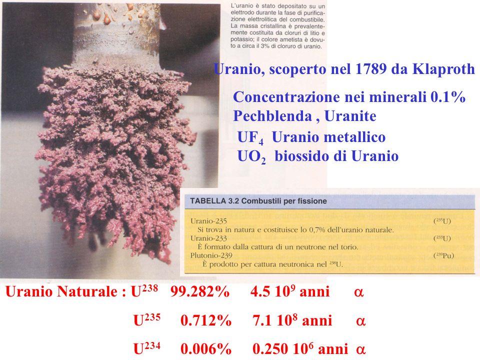 Famiglia Radioattiva DellUranio 238 Uranio Naturale 0.7% di U 235 LUranio