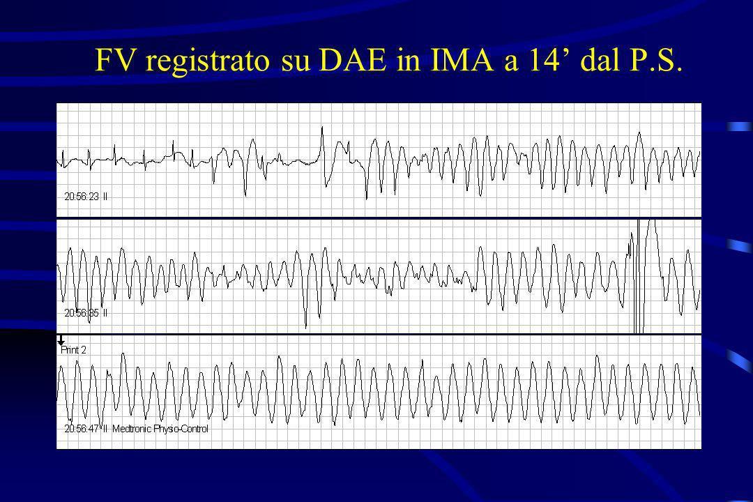 FV registrato su DAE in IMA a 14 dal P.S.