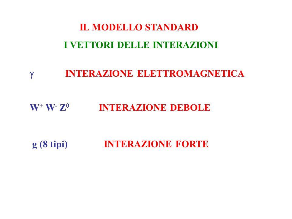 IL MODELLO STANDARD I VETTORI DELLE INTERAZIONI INTERAZIONE ELETTROMAGNETICA W + W - Z 0 INTERAZIONE DEBOLE g (8 tipi) INTERAZIONE FORTE