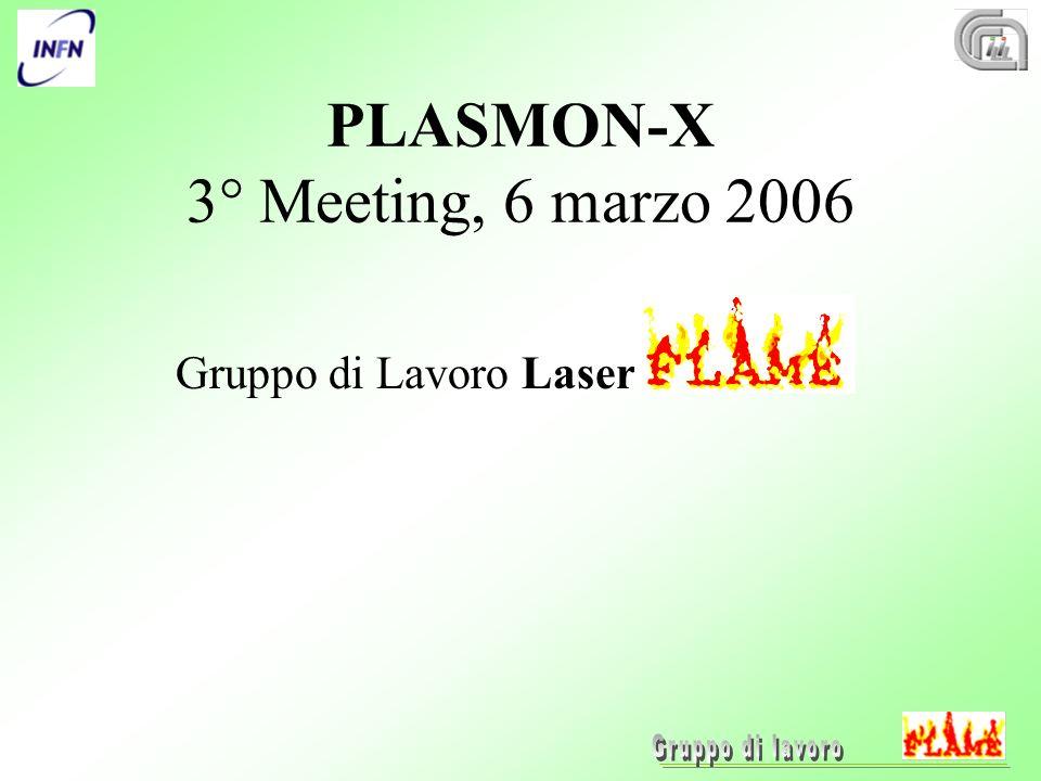 PLASMON-X 3° Meeting, 6 marzo 2006 Gruppo di Lavoro Laser