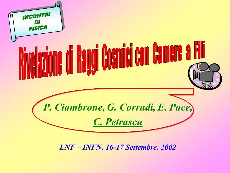 P. Ciambrone, G. Corradi, E. Pace, C. Petrascu LNF – INFN, 16-17 Settembre, 2002