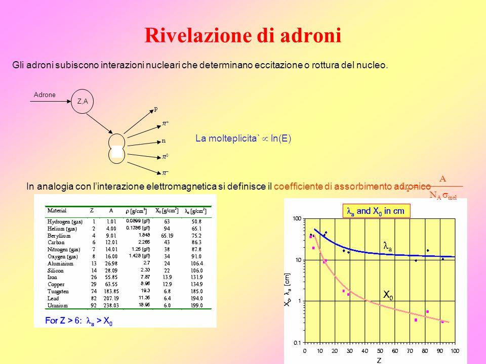 Rivelazione di adroni Z,A Adrone n p Gli adroni subiscono interazioni nucleari che determinano eccitazione o rottura del nucleo. La molteplicita` ln(E