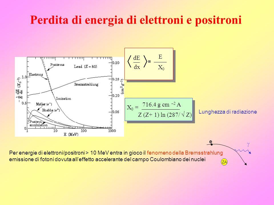 Perdita di energia di elettroni e positroni Per energie di elettroni/positroni > 10 MeV entra in gioco il fenomeno della Bremsstrahlung emissione di f