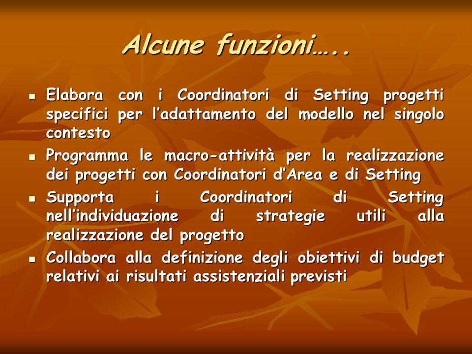 Alcune funzioni….. Elabora con i Coordinatori di Setting progetti specifici per ladattamento del modello nel singolo contesto Elabora con i Coordinato