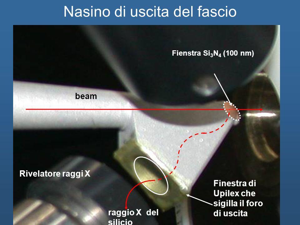 beam Rivelatore raggi X raggio X del silicio Finestra di Upilex che sigilla il foro di uscita Fienstra Si 3 N 4 (100 nm) Nasino di uscita del fascio