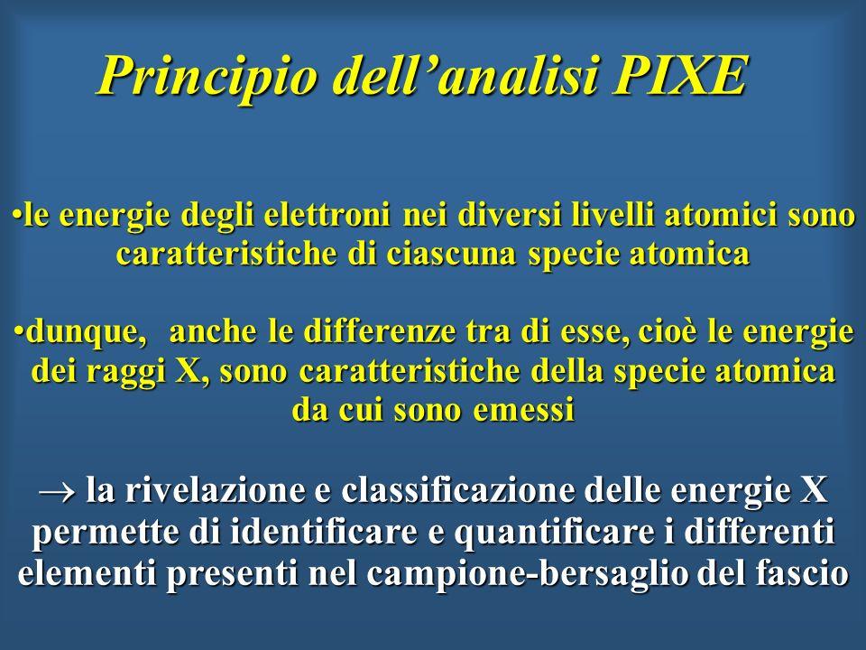 Principio dellanalisi PIXE le energie degli elettroni nei diversi livelli atomici sono caratteristiche di ciascuna specie atomicale energie degli elet
