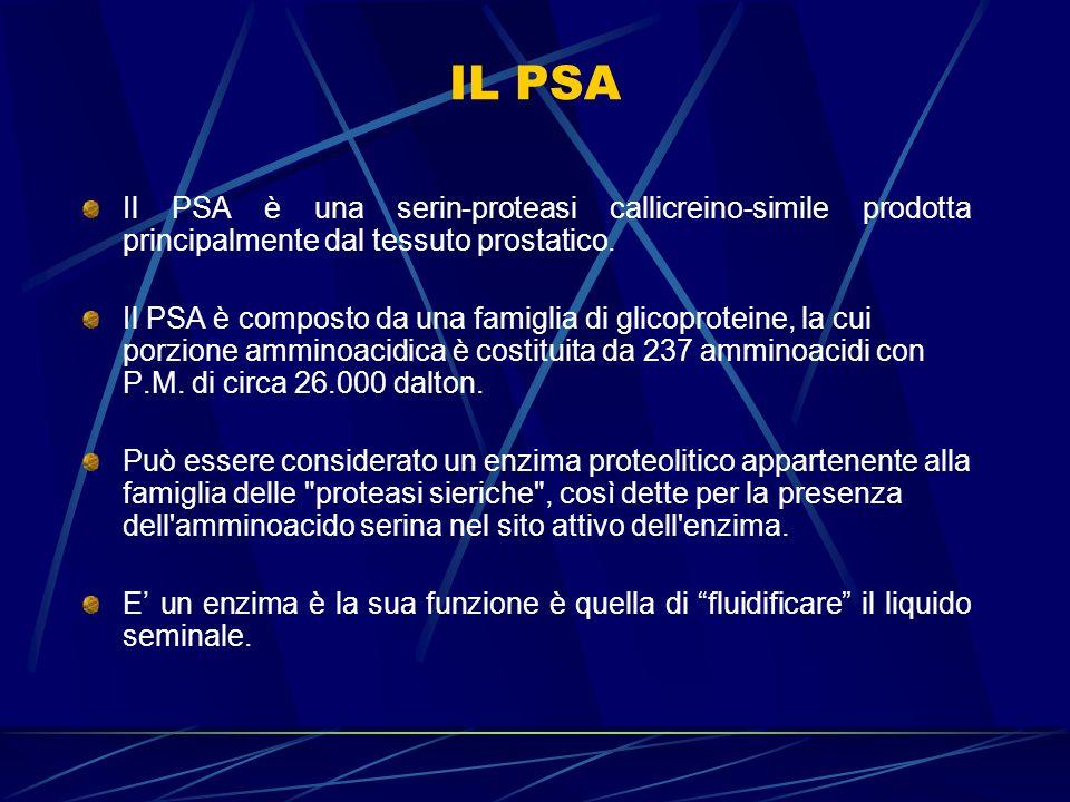 IL PSA Il PSA circola nel sangue sia libero che legato a inibitori enzimatici quali l antichimotripsina e l alfa-2-macroglobulina.