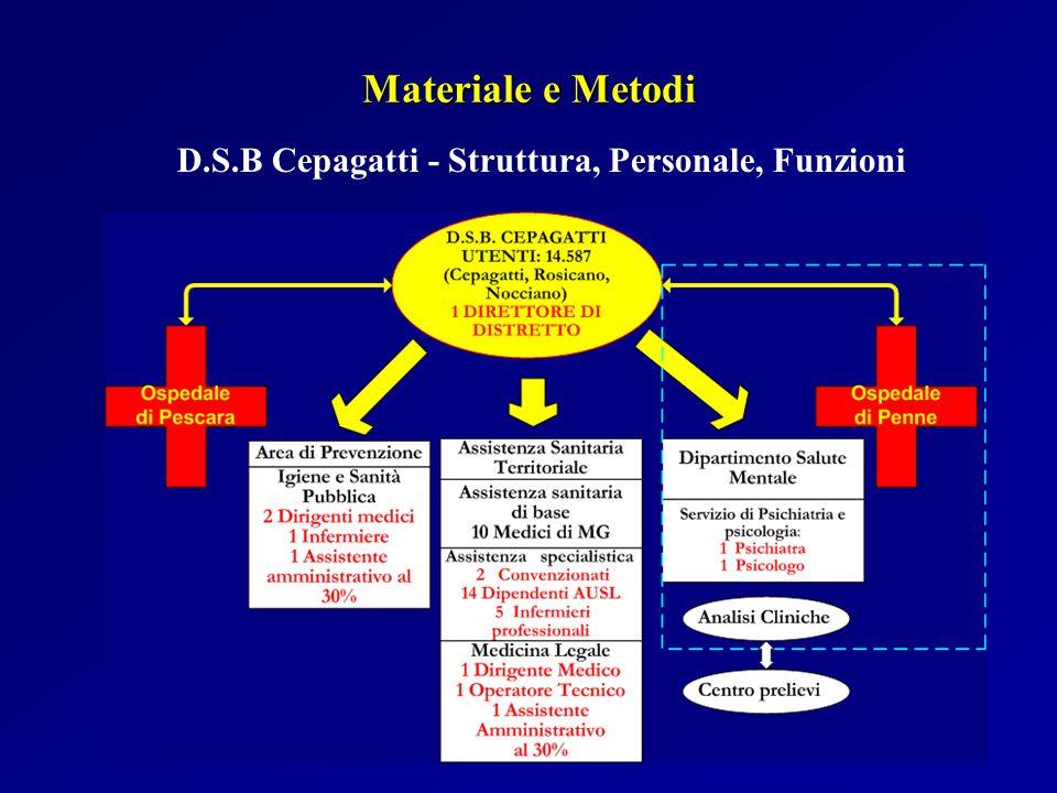 D.S.B Cepagatti - Struttura, Personale, Funzioni Materiale e Metodi