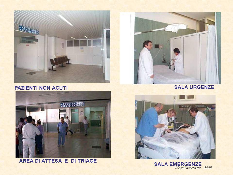 Diego Paternosto 2005 PAZIENTI NON ACUTI SALA URGENZE SALA EMERGENZE AREA DI ATTESA E DI TRIAGE