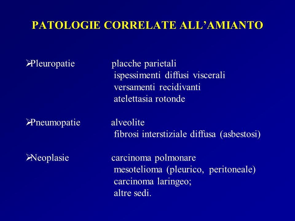 Pleuropatie placche parietali ispessimenti diffusi viscerali versamenti recidivanti atelettasia rotonde Pneumopatie alveolite fibrosi interstiziale di