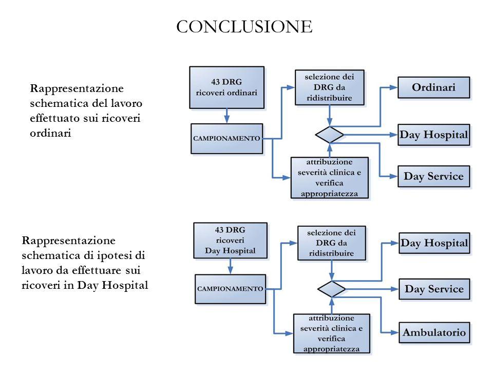 Rappresentazione schematica di ipotesi di lavoro da effettuare sui ricoveri in Day Hospital Rappresentazione schematica del lavoro effettuato sui rico