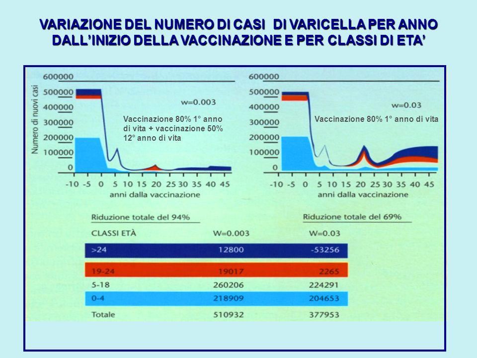 VARIAZIONE DEL NUMERO DI CASI DI VARICELLA PER ANNO DALLINIZIO DELLA VACCINAZIONE E PER CLASSI DI ETA Vaccinazione 80% 1° anno di vita + vaccinazione