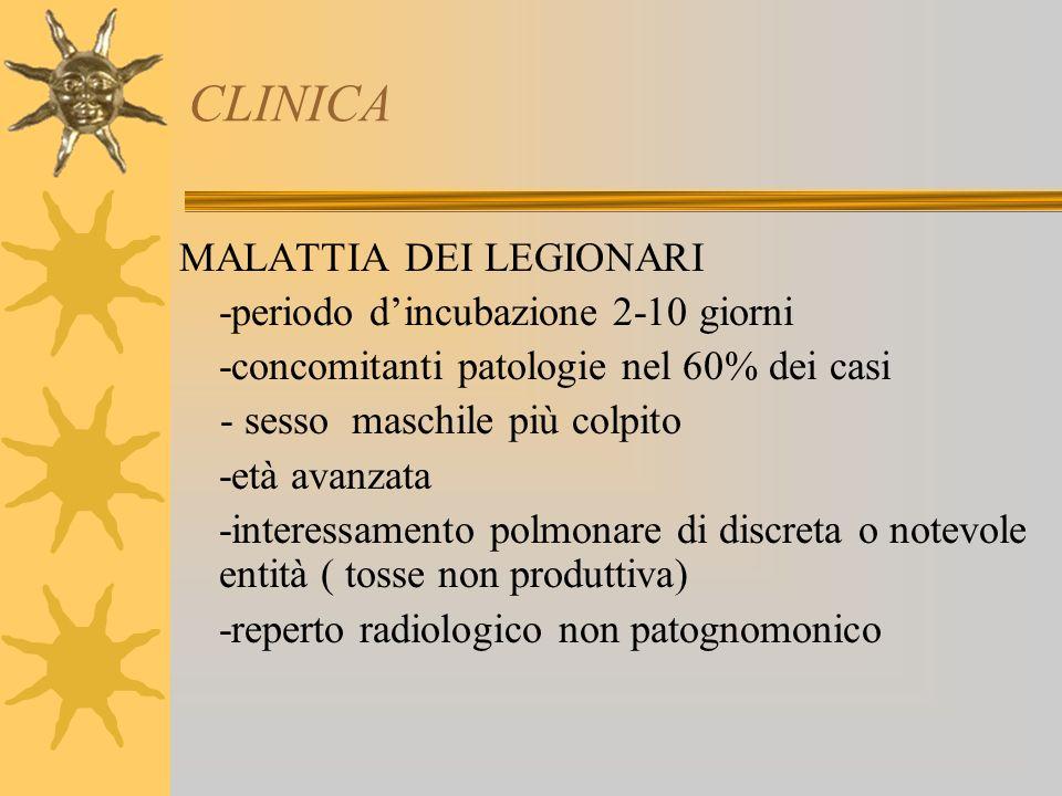 CLINICA MALATTIA DEI LEGIONARI -periodo dincubazione 2-10 giorni -concomitanti patologie nel 60% dei casi - sesso maschile più colpito -età avanzata -interessamento polmonare di discreta o notevole entità ( tosse non produttiva) -reperto radiologico non patognomonico