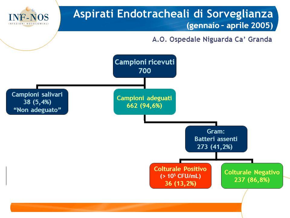 A.O. Ospedale Niguarda Ca Granda Aspirati Endotracheali di Sorveglianza (gennaio – aprile 2005)