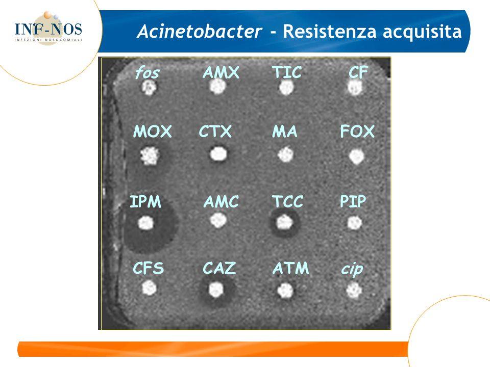 Acinetobacter – Resistenza a Imipenem fosAMXTICCF MOXCTXMAFOX IPMAMCTCCPIP tet x4CAZATMcip
