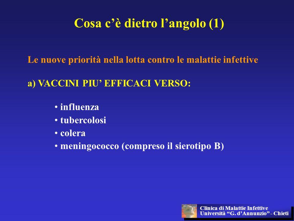 Cosa cè dietro langolo (1) Le nuove priorità nella lotta contro le malattie infettive a) VACCINI PIU EFFICACI VERSO: influenza tubercolosi colera meni