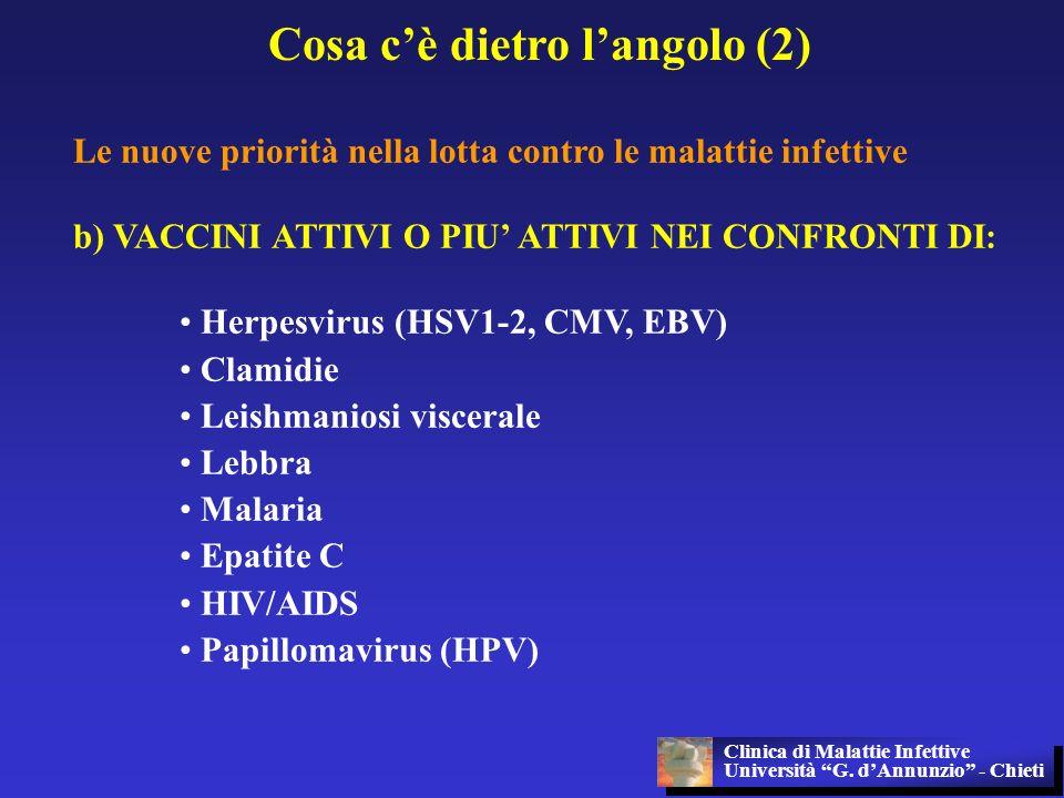 Cosa cè dietro langolo (2) Le nuove priorità nella lotta contro le malattie infettive b) VACCINI ATTIVI O PIU ATTIVI NEI CONFRONTI DI: Herpesvirus (HS