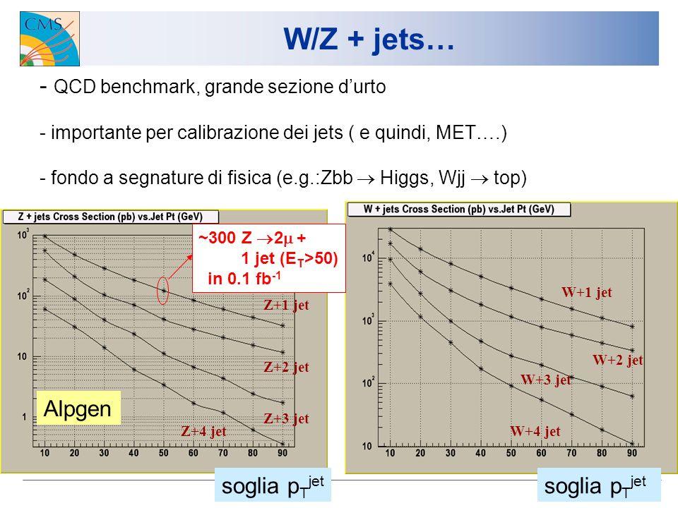 6 W/Z + jets… Z+1 jet Z+2 jet Z+3 jet Z+4 jetW+4 jet W+3 jet W+2 jet W+1 jet - QCD benchmark, grande sezione durto - importante per calibrazione dei jets ( e quindi, MET….) - fondo a segnature di fisica (e.g.:Zbb Higgs, Wjj top) soglia p T jet ~300 Z 2 + 1 jet (E T >50) in 0.1 fb -1 Alpgen