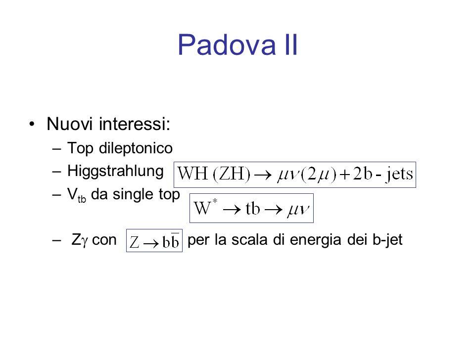 Padova II Nuovi interessi: –Top dileptonico –Higgstrahlung –V tb da single top – Z con per la scala di energia dei b-jet
